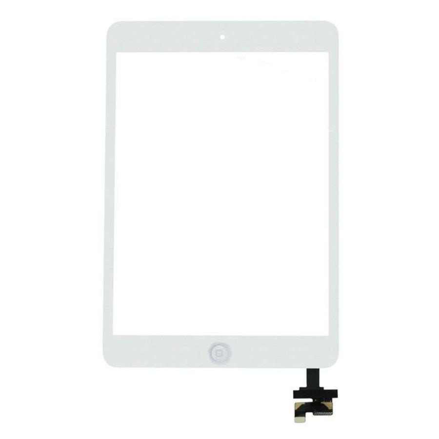 Apple iPad Mini scherm-2
