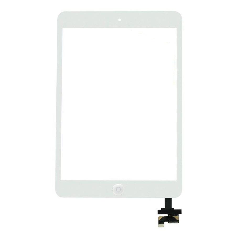 Apple iPad Mini 1 Glas-2