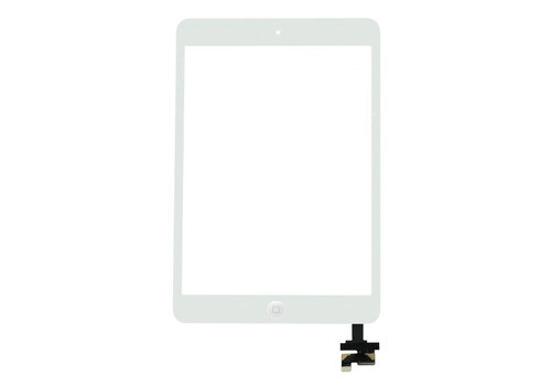 Apple iPad Mini 2 Glas