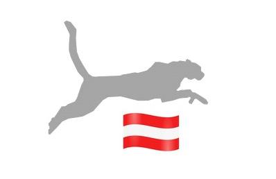 Internetagentur für Österreich