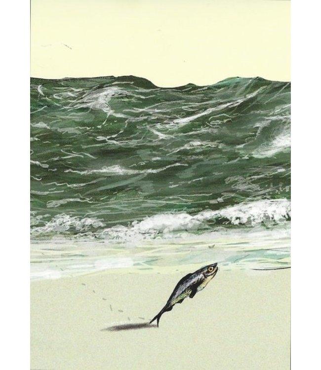 Peter Hammer Verlag Strandspaziergang