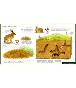 Natur-Verlag Wawra Hase und Kaninchen