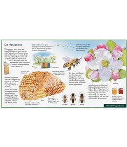 Natur-Verlag Wawra Biene