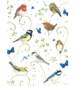 Daniela Drescher Vögel und Schmetterlinge
