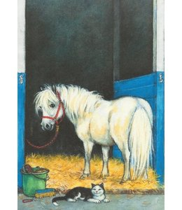 Hjelm Förlag Billie, das freche Pony