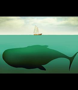 SKOWRONSKI & KOCH VERLAG Unter dem Meer