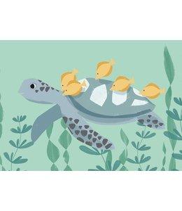 Vierundfünfzig Illustration Schildkröte