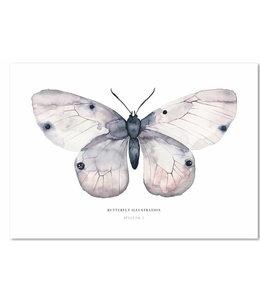 LEO LA DOUCE Schmetterling