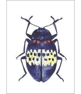 LEO LA DOUCE Blauer Käfer