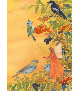 Daniela Drescher Elfe und Vögel