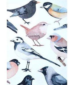 nataskalia Vogelgruß