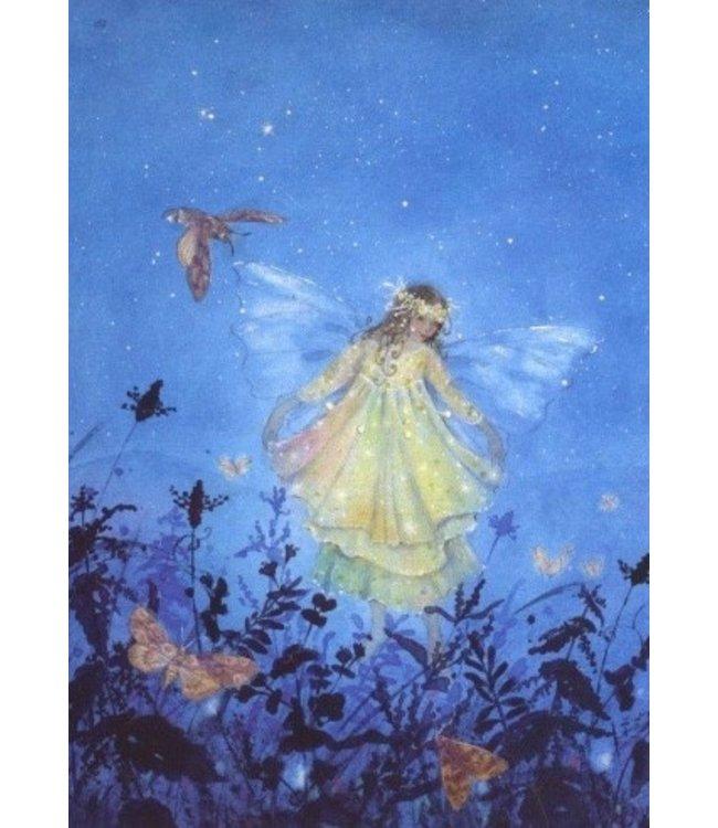 Daniela Drescher Die kleine Elfe in der Nacht