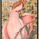 VanillaFly VanillaFly Poster Birdie Orange 30x40