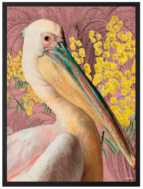 VanillaFly VanillaFly Poster Pelican Pink 20x25