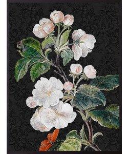 VanillaFly Poster Black Appleblossom 20x25