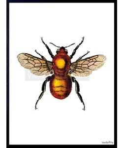 VanillaFly Poster Yellow Bee 20x25
