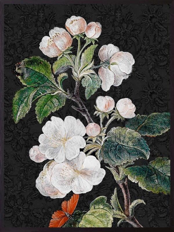 VanillaFly VanillaFly Poster Black Appleblossom 20x25