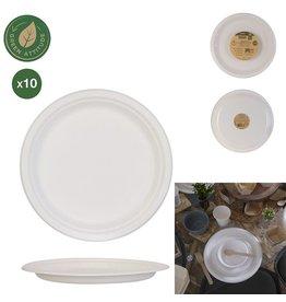 10 borden van suikerriet 25 cm