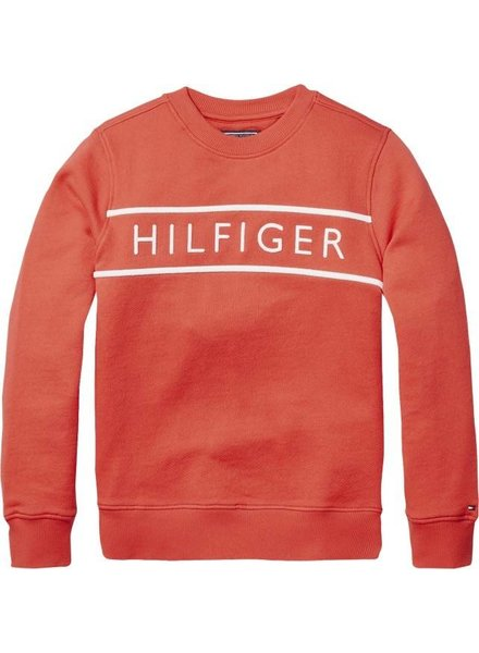 Tommy Hilfiger 3D Embroidery sweatshirt
