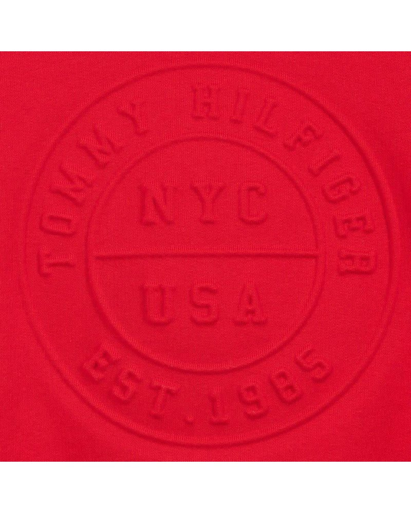 Tommy Hilfiger 3D Logo Hoodie