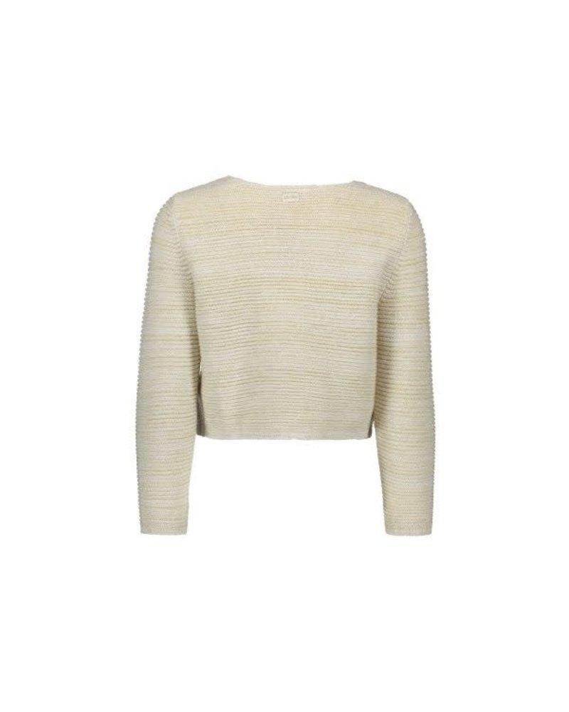 Cardigan glitter knit