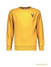 Street called Madison Charlie sweater - CHARLIE (geel)