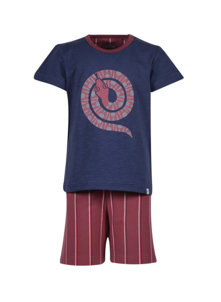 Woody Boys-men pyjamas, dak blue slang