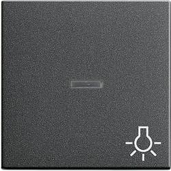 GIRA schakelwip controlevenster symbool licht Systeem 55 antraciet mat (067428)
