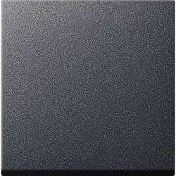 GIRA dimmerknop Systeem 3000 tastdimmer Systeem 55 antraciet mat (536028)