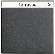 GIRA schakelwip tekstkader Systeem 55 antraciet mat (029928)