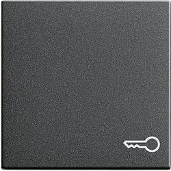 GIRA schakelwip symbool deur Systeem 55 antraciet mat (028728)