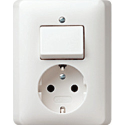 GIRA combinatie schakelaar en wandcontactdoos randaarde Systeem 55 wit glans (017603)