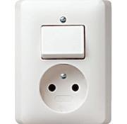 GIRA combinatie schakelaar en wandcontactdoos zonder randaarde Systeem 55 wit mat (047604)