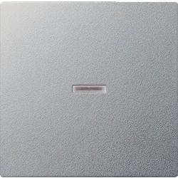 GIRA schakelwip controlevenster Systeem 55 aluminium mat (029026)