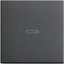 GIRA schakelwip controlevenster Systeem 55 antraciet mat (029028)
