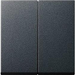 GIRA schakelwip 2-voudig Systeem 55 antraciet mat (029528)