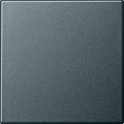 GIRA schakelwip Systeem 55 antraciet mat (029628)