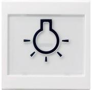 GIRA schakelwip tekstkader groot symbool licht Systeem 55 wit mat (021627)
