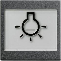 GIRA schakelwip tekstkader groot symbool licht Systeem 55 antraciet mat (021628)
