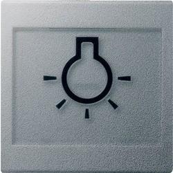 GIRA schakelwip tekstkader groot symbool licht Systeem 55 aluminium mat (021626)