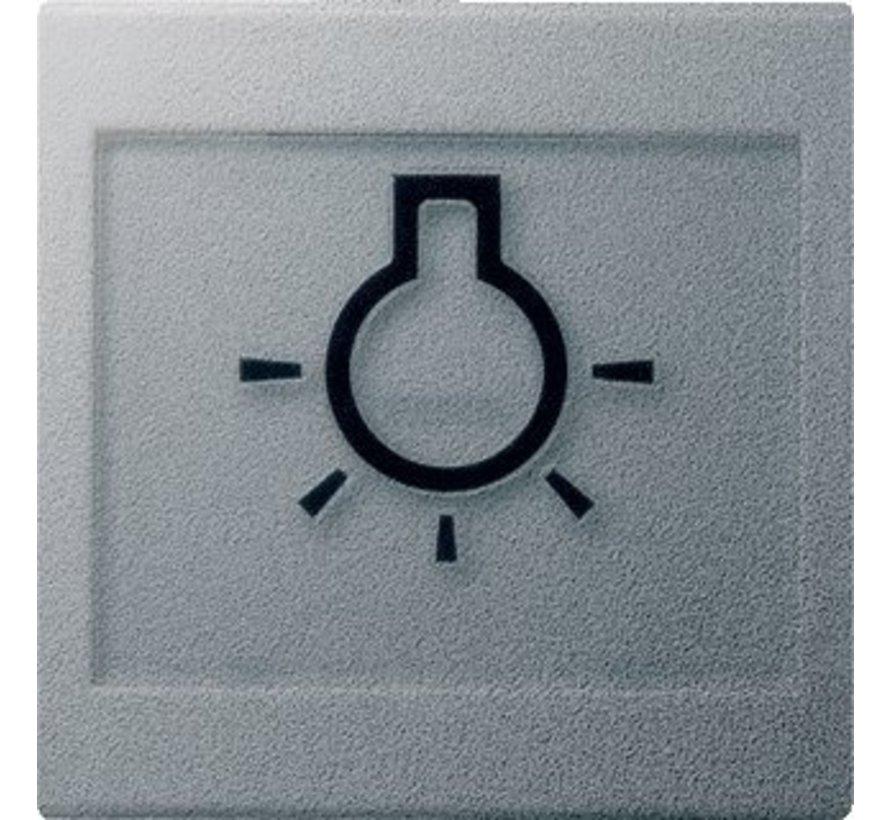 schakelwip tekstkader groot symbool licht Systeem 55 aluminium mat (021626)