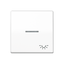 JUNG schakelwip licht-symbool controlevenster AS500 alpine wit (AS 591 KO5L WW)