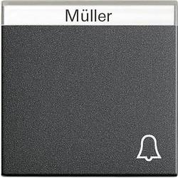 GIRA schakelwip tekstkader symbool bel Systeem 55 antraciet mat (067328)