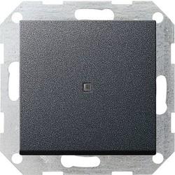 GIRA drukvlakschakelaar rechtstaand controleverlichting 1-polig Systeem 55 antraciet mat (012428)