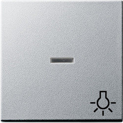 GIRA schakelwip controlevenster symbool licht Systeem 55 aluminium mat (067426)