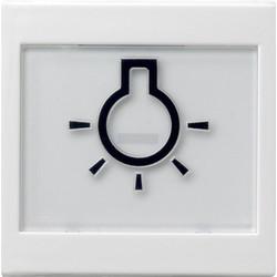 GIRA schakelwip tekstkader groot symbool licht Systeem 55 wit glans (021603)