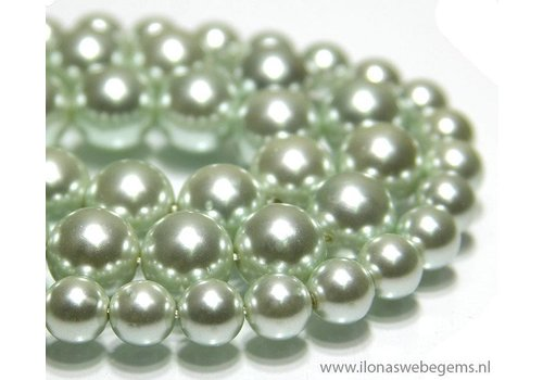 Shell Pearl round app. 8mm