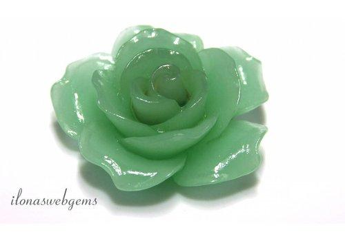 Koraal roos groen ca. 34x13mm (kraal)