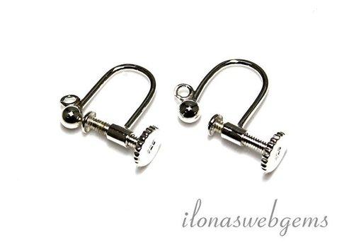 1 pair of earrings with screw cap