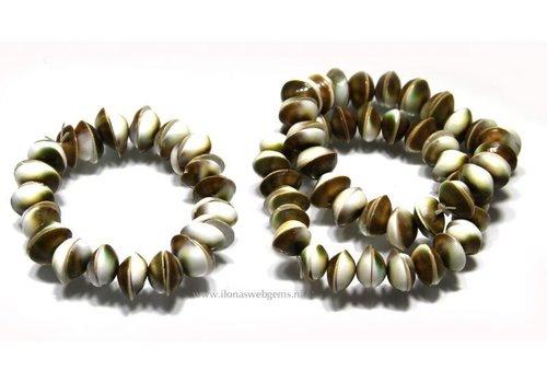 Shiva Shell armband ca. 11x3mm